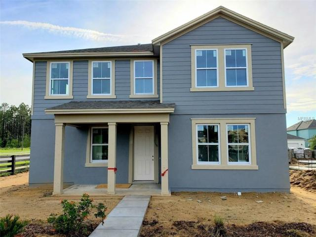 6543 Orange Cream Alley, Winter Garden, FL 34787 (MLS #O5774593) :: Bustamante Real Estate