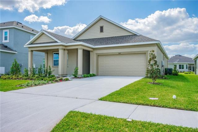 2869 Posada Lane, Odessa, FL 33556 (MLS #O5775152) :: Griffin Group