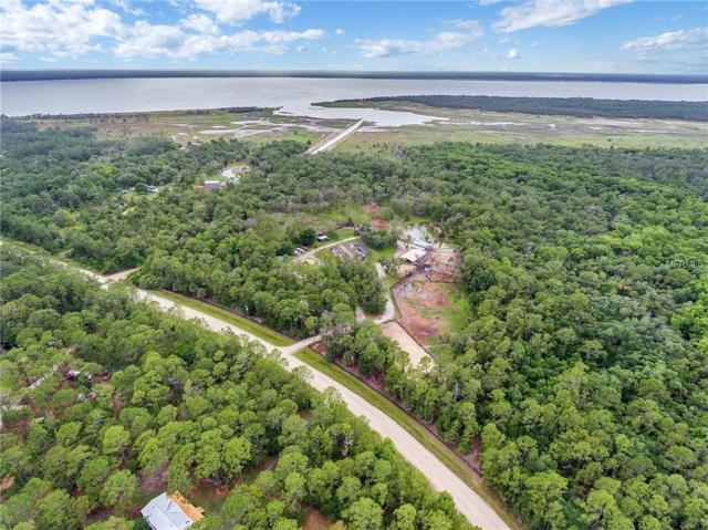 1200 Lake Harney Woods Boulevard, Mims, FL 32754 (MLS #O5783405) :: Cartwright Realty