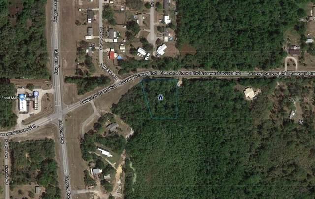 835 Canaveral Groves Boulevard, Cocoa, FL 32926 (MLS #O5783592) :: Lockhart & Walseth Team, Realtors