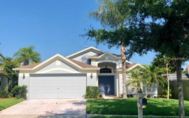 3725 Lonewood Court, Land O Lakes, FL 34638 (MLS #O5784367) :: Team Suzy Kolaz