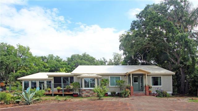 10140 Lake Louisa Road, Clermont, FL 34711 (MLS #O5785416) :: Bustamante Real Estate