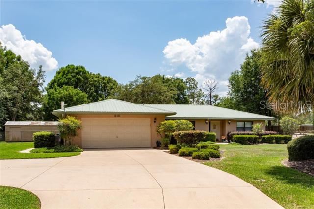 12310 S Putney Court, Leesburg, FL 34788 (MLS #O5785954) :: The Duncan Duo Team