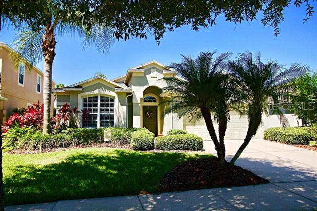1133 Hawkslade Court, Winter Garden, FL 34787 (MLS #O5786387) :: Bustamante Real Estate