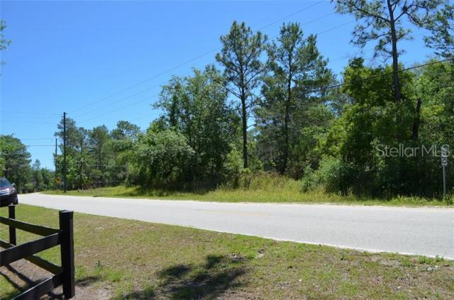 Hansen Trail, Kissimmee, FL 34747 (MLS #O5787846) :: 54 Realty