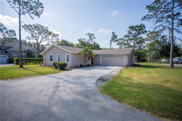 5210 Londonderry Lane, Wesley Chapel, FL 33543 (MLS #O5789017) :: The Duncan Duo Team