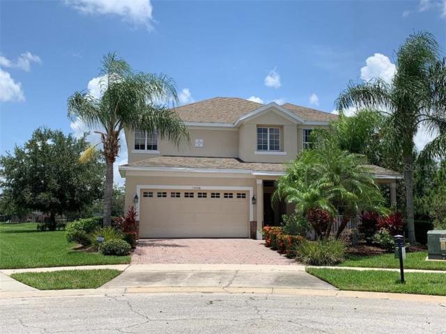 13438 Davenham Point, Orlando, FL 32832 (MLS #O5789951) :: Florida Real Estate Sellers at Keller Williams Realty