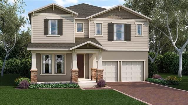 13585 Gorgona Isle Drive, Windermere, FL 34786 (MLS #O5790418) :: Bustamante Real Estate