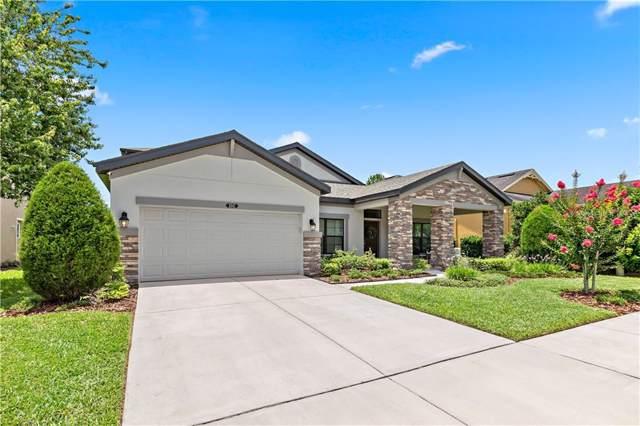 8947 Garden Party Drive, Land O Lakes, FL 34637 (MLS #O5791410) :: Cartwright Realty
