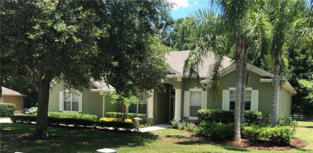 2663 Spicebush Loop, Apopka, FL 32712 (MLS #O5792279) :: Armel Real Estate