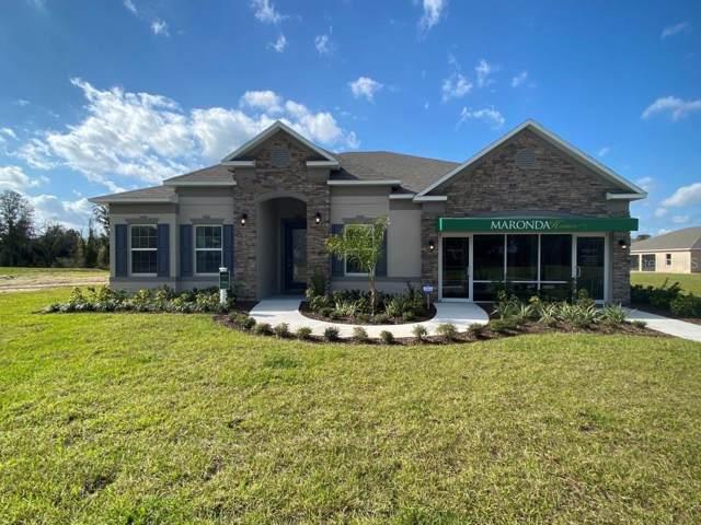 1617 Marsh Pointe Drive, Groveland, FL 34736 (MLS #O5792699) :: 54 Realty