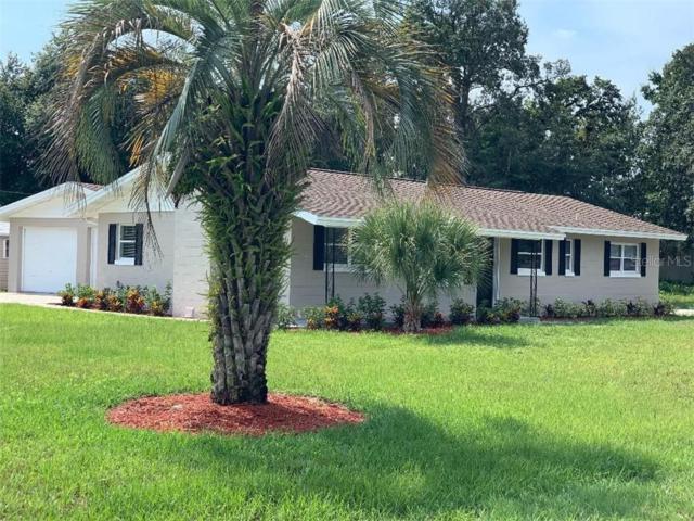 9445 W Paulinda Avenue, Apopka, FL 32703 (MLS #O5793517) :: Ideal Florida Real Estate
