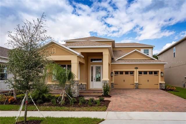 8142 Common Teal Court, Winter Garden, FL 34787 (MLS #O5800486) :: Bustamante Real Estate