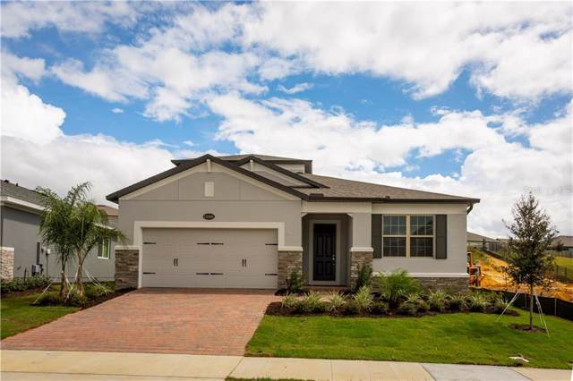 13306 Blossom Valley Drive, Clermont, FL 34711 (MLS #O5800517) :: Team Bohannon Keller Williams, Tampa Properties