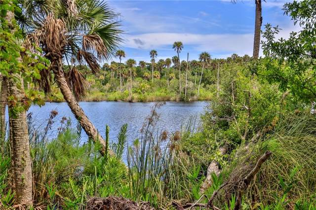 Pine Bluff Trail, Ormond Beach, FL 32174 (MLS #O5800811) :: Florida Life Real Estate Group
