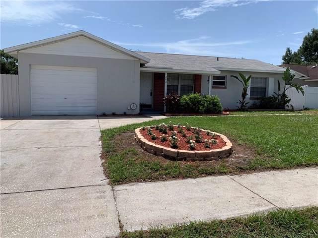 242 Lalla Lane, Apopka, FL 32712 (MLS #O5806146) :: GO Realty