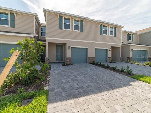 15019 Abby Birch Place, Tampa, FL 33613 (MLS #O5807436) :: Cartwright Realty