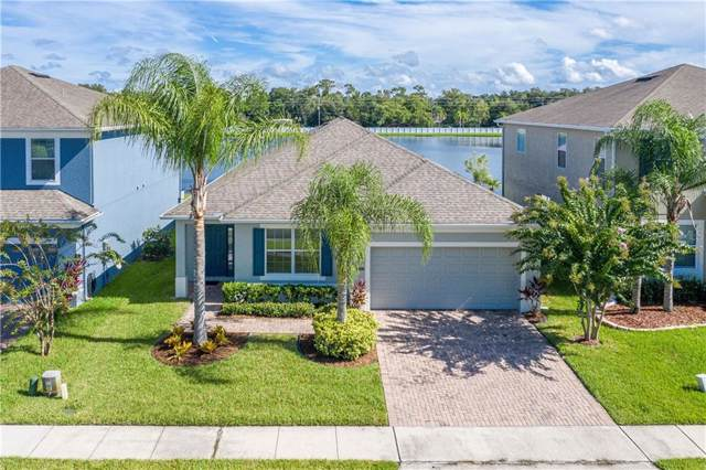 15036 Montesino Drive, Orlando, FL 32828 (MLS #O5807467) :: Florida Real Estate Sellers at Keller Williams Realty