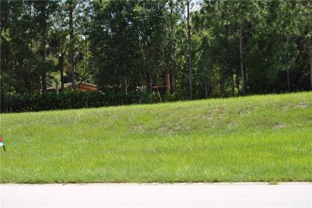 30101 Bretton Loop, Mount Dora, FL 32757 (MLS #O5812147) :: Griffin Group