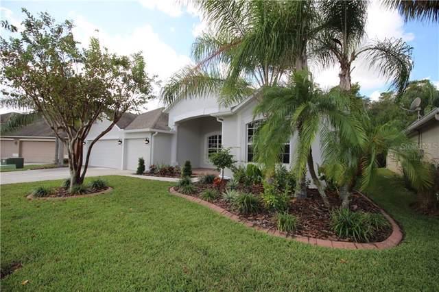 26712 Shoregrass Drive, Wesley Chapel, FL 33544 (MLS #O5817338) :: Team Bohannon Keller Williams, Tampa Properties