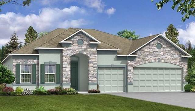 1696 Marsh Pointe Drive, Groveland, FL 34736 (MLS #O5817429) :: The Duncan Duo Team
