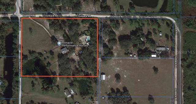 1390 Outback Road, Saint Cloud, FL 34771 (MLS #O5818089) :: Rabell Realty Group