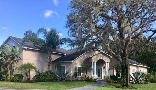 8321 Happy Trail Trail, Kissimmee, FL 34747 (MLS #O5818670) :: Alpha Equity Team