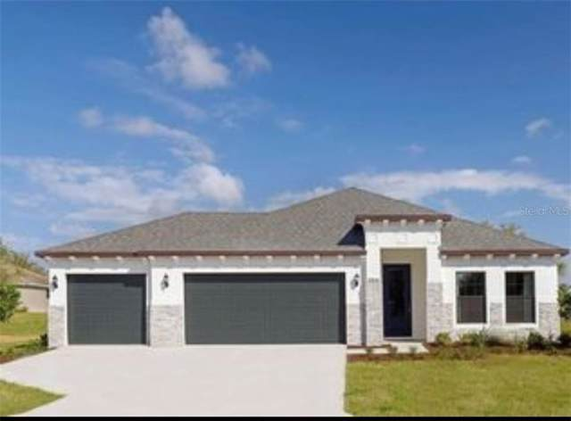 12841 Sugar Court, Grand Island, FL 32735 (MLS #O5823505) :: The Light Team