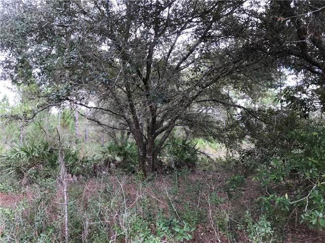Lot 233 Quarterly Parkway, Orlando, FL 32833 (MLS #O5825673) :: Cartwright Realty