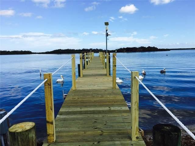 445 River Road, Oak Hill, FL 32759 (MLS #O5828641) :: Florida Life Real Estate Group