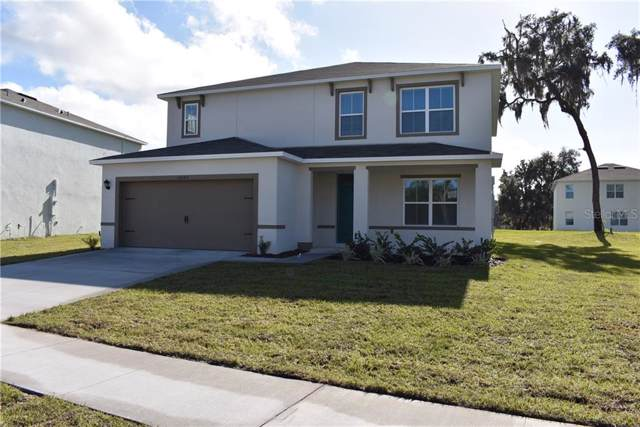 10540 Bronze Leaf Court, Leesburg, FL 34788 (MLS #O5830181) :: 54 Realty