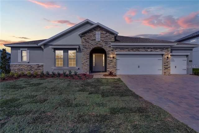 1674 Juniper Hammock Street, Winter Garden, FL 34787 (MLS #O5846281) :: Bustamante Real Estate