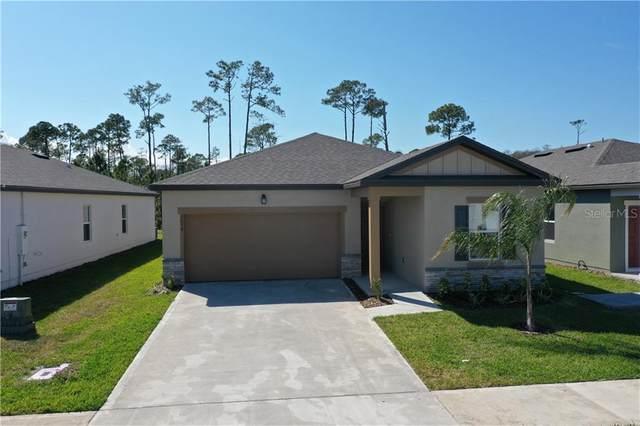 3078 Neverland Drive, New Smyrna Beach, FL 32168 (MLS #O5853036) :: Florida Life Real Estate Group