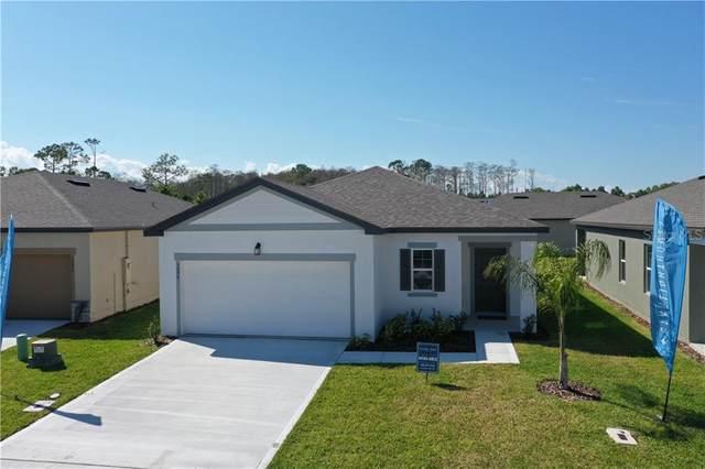 3094 Neverland Drive, New Smyrna Beach, FL 32168 (MLS #O5853125) :: BuySellLiveFlorida.com