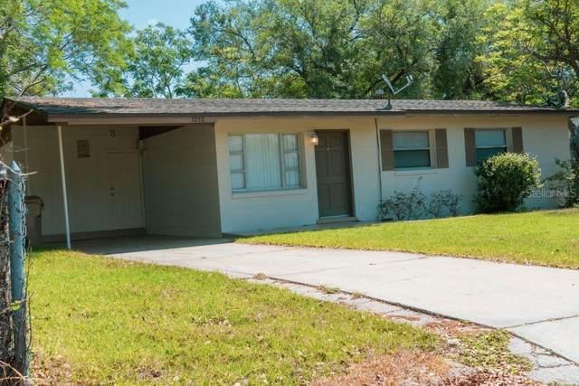 1050 Emerald Drive, Mount Dora, FL 32757 (MLS #O5854511) :: Your Florida House Team