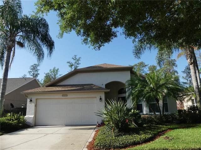 2797 Runyon Circle, Orlando, FL 32837 (MLS #O5855096) :: Bustamante Real Estate