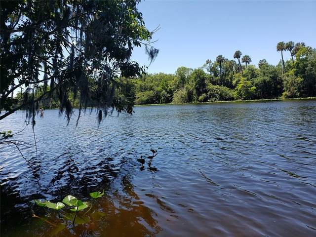Quail Hollow Drive, Deland, FL 32720 (MLS #O5860401) :: Bustamante Real Estate