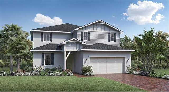 2461 Cedar Rose Street, Apopka, FL 32712 (MLS #O5862288) :: Griffin Group