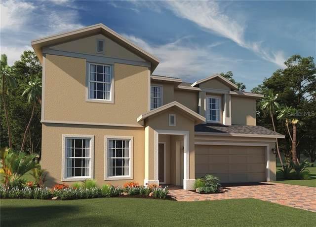 3181 Wauseon Drive, Saint Cloud, FL 34772 (MLS #O5864197) :: Baird Realty Group