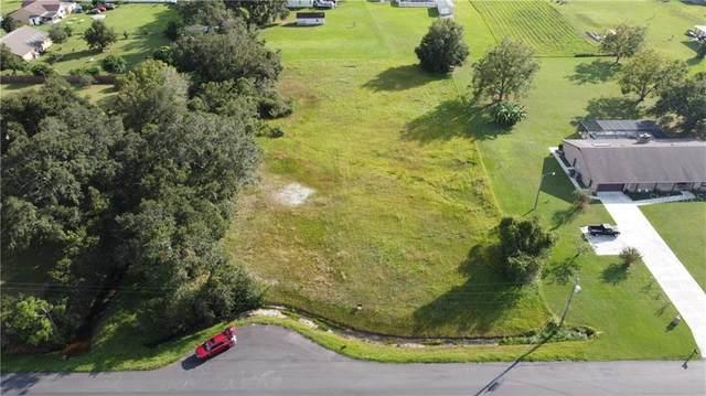 2694 Borinquen Drive, Kissimmee, FL 34744 (MLS #O5870364) :: Delgado Home Team at Keller Williams