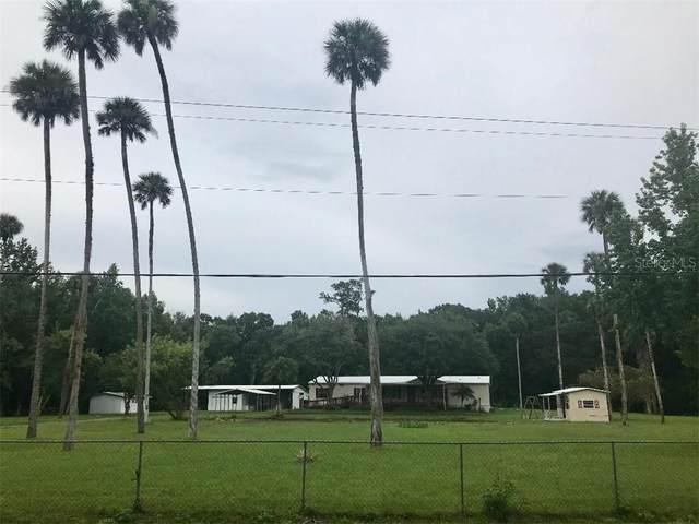 24429 River Road, Astor, FL 32102 (MLS #O5873353) :: Team Bohannon Keller Williams, Tampa Properties