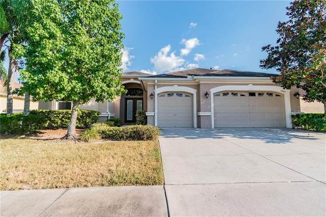 1440 Beaconsfield Drive, Wesley Chapel, FL 33543 (MLS #O5873405) :: Team Bohannon Keller Williams, Tampa Properties