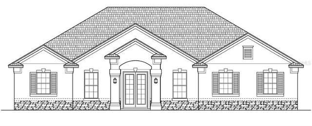 19259 Starry Street, Orlando, FL 32833 (MLS #O5878630) :: Bustamante Real Estate