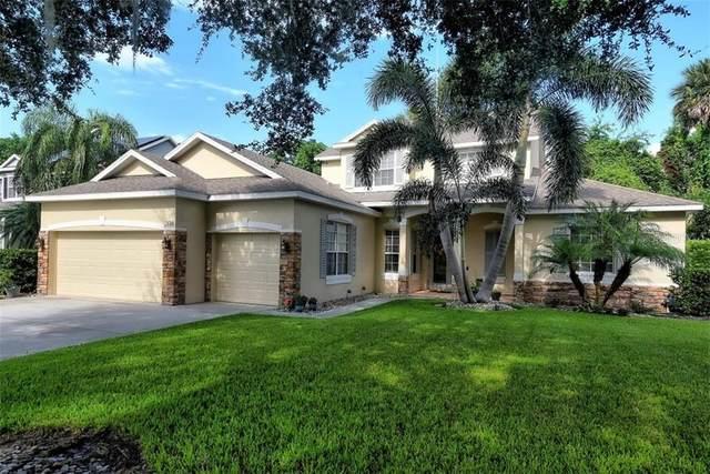 336 Largovista Drive, Oakland, FL 34787 (MLS #O5878669) :: Key Classic Realty