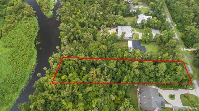 Okaloosa Trail, Sorrento, FL 32776 (MLS #O5880096) :: BuySellLiveFlorida.com