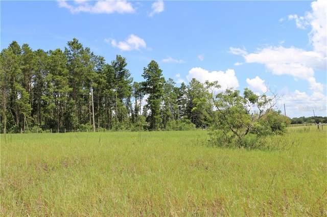County Road 452, Leesburg, FL 34788 (MLS #O5880909) :: Zarghami Group