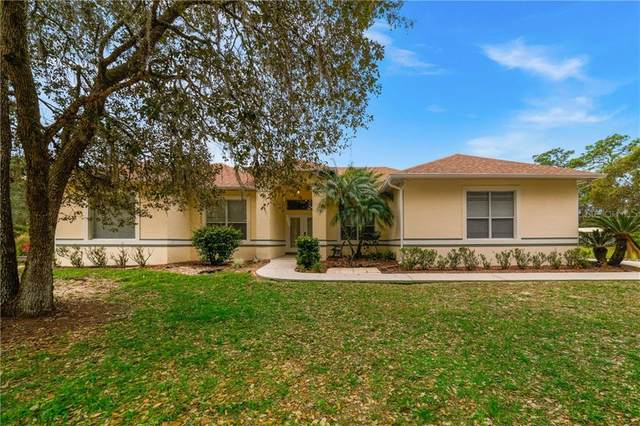 230 Pawnee Trail, Kissimmee, FL 34747 (MLS #O5892197) :: Realty One Group Skyline / The Rose Team