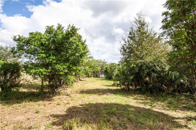 Bluff Lake Road, Mascotte, FL 34753 (MLS #O5893385) :: Baird Realty Group