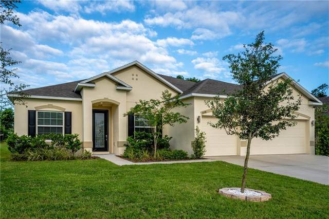 3598 Pelock Drive, Apopka, FL 32703 (MLS #O5894416) :: Rabell Realty Group