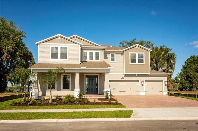 1232 Hull Island Drive, Oakland, FL 34787 (MLS #O5897287) :: Burwell Real Estate